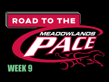 New top dog in the Week 9 edition of Dave Little's Road to The Meadowlands Pace
