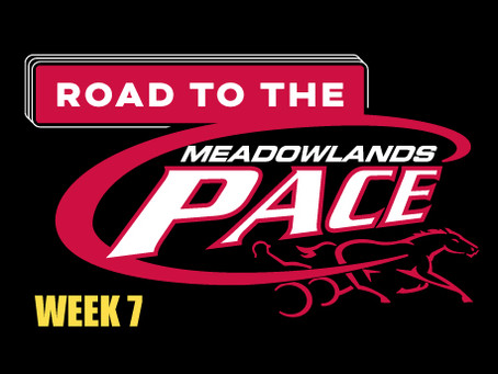 Week 7 of Dave Little's Road to the Meadowlands Pace