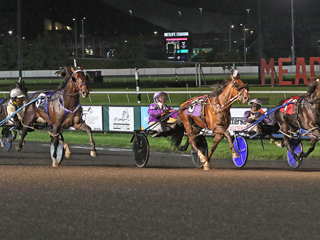 Lawless Shadow declared Meadowlands Pace winner after DQ