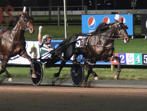 TALL DARK STRANGER REFUSES TO LOSE IN MEADOWLANDS PACE