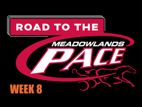 Week 8 of Dave Little's Road to the Meadowlands Pace