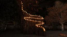 Bamboo Inspired Fire Sculpture