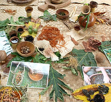 Natural ingredients for decoration of tapa. Tapa Festival, Pirae, Tahiti November 2014