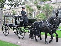 OIP horse and cart.jpg