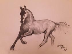 charcoal-horse_edited