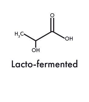 Lacto-fermented.jpg