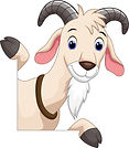 Picture of goat for Goats Milk soap for sale.