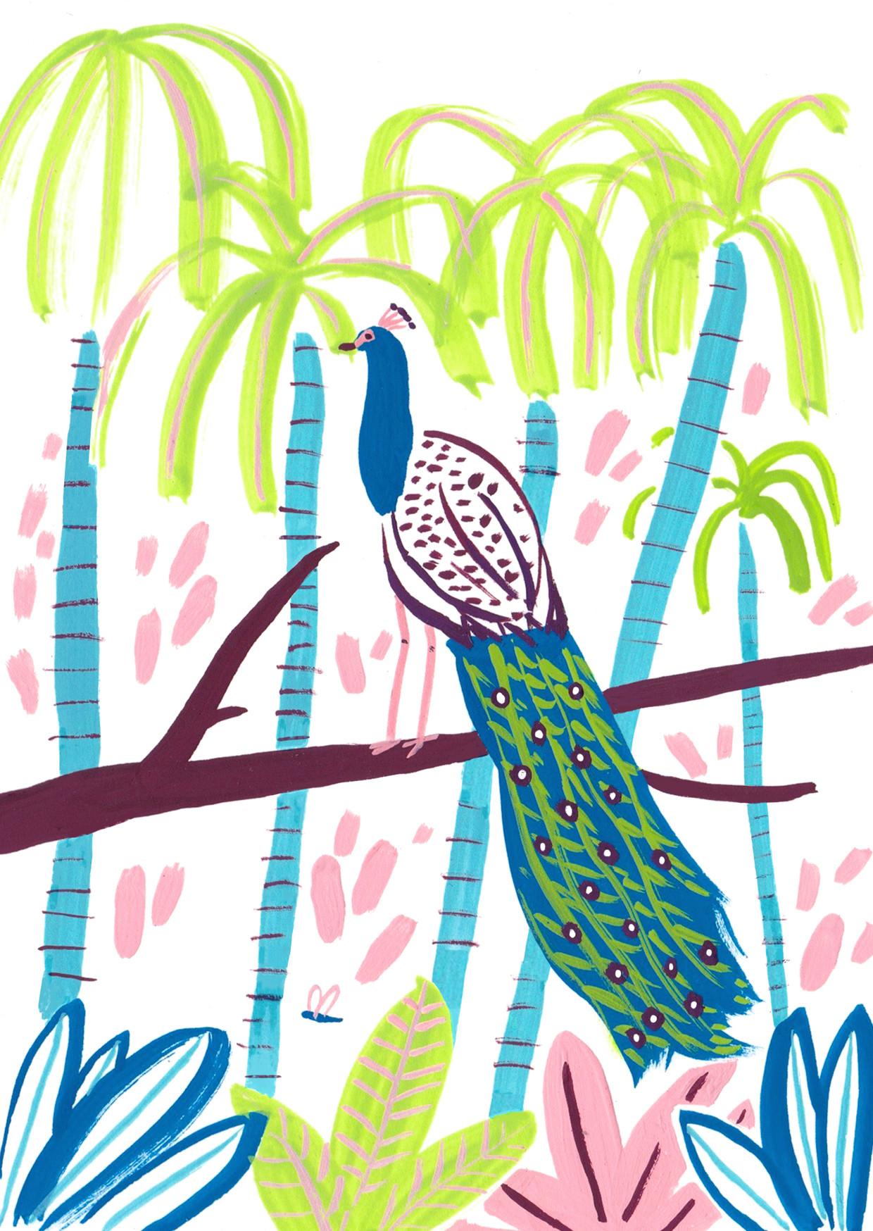 Sarah Martin Illustration