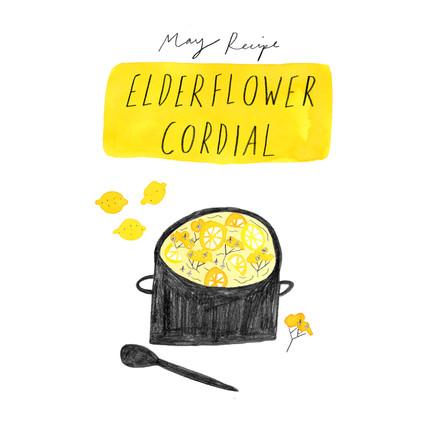Elderflower Recipe, Sarah Martin .jpg