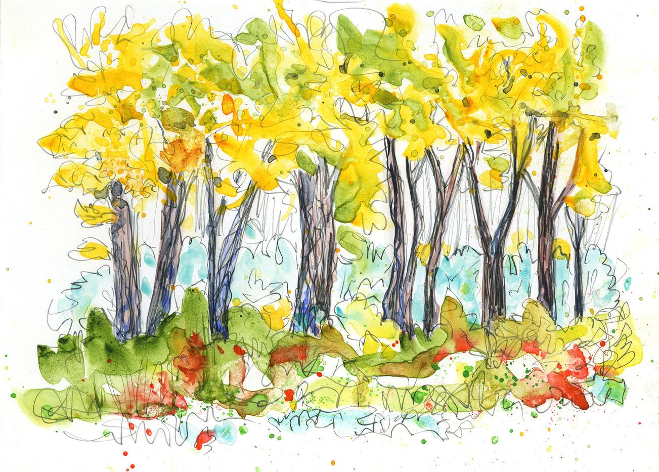 Fall Cottonwoods