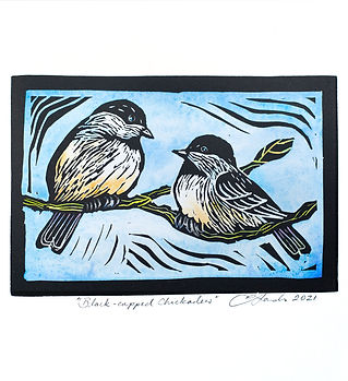 chickadees adjusted 756A8227 for fb.jpg