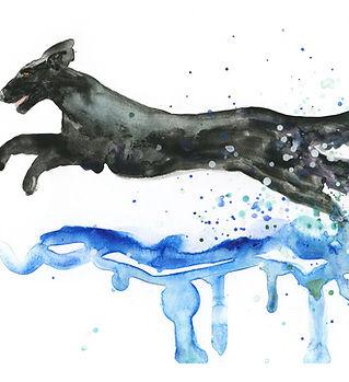 Flat-coated retriever watercolour print