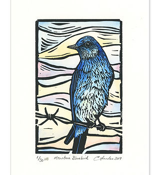 bluebird093-adj.jpg