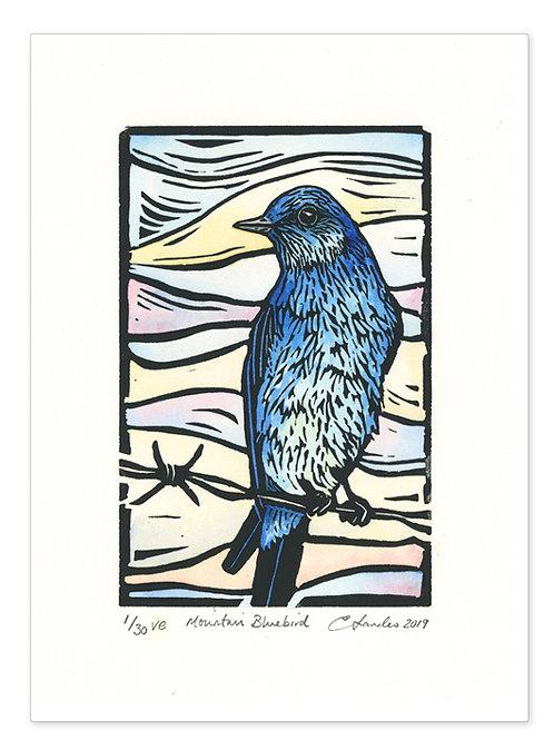 """""""Mountain Bluebird"""" Hand-coloured Lino Print"""