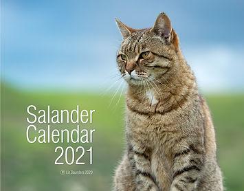 SalCover2021 FINAL for web.jpg