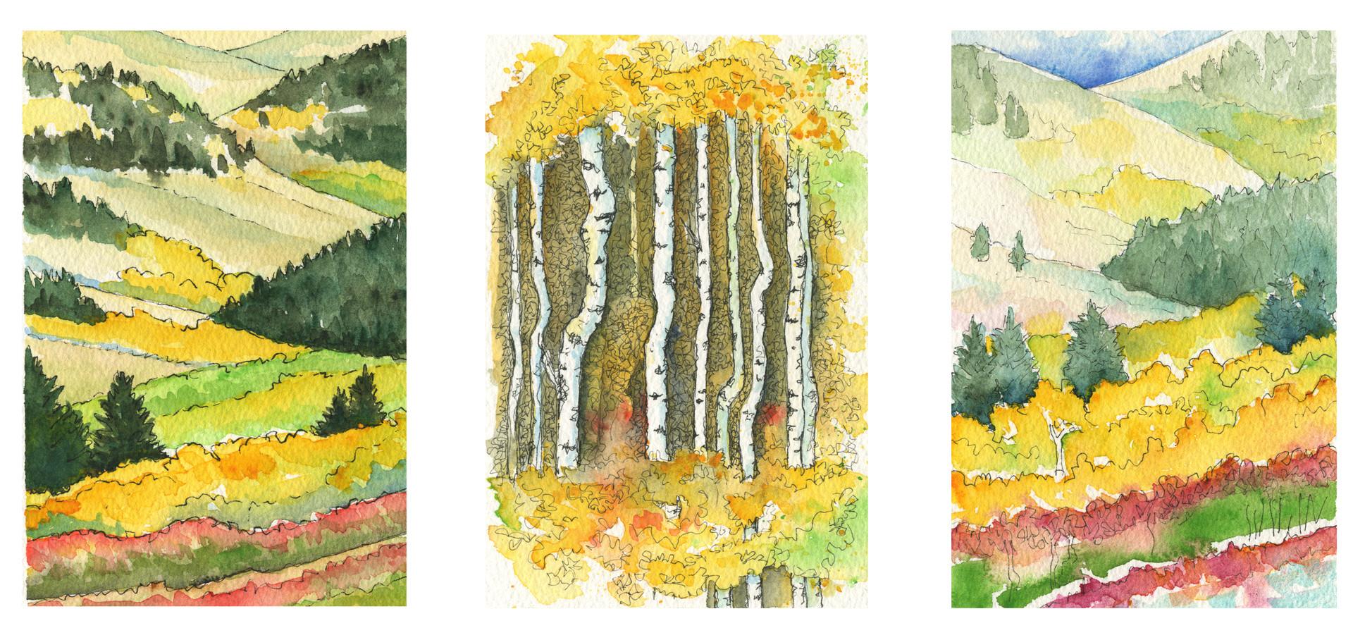 Porcupine Hills Sketches