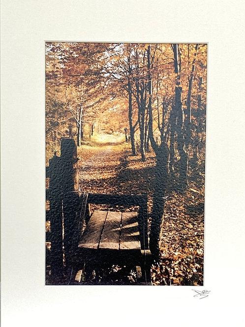 Print ; Beleek Woods