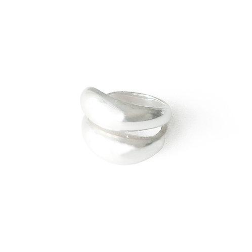Silver-R22901