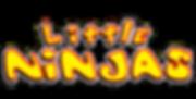 Little-Ninja-Front-Logo.png