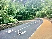 North Road Cycleway (4).jpg