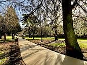 Sophia Gardens Cycleway (4).JPG