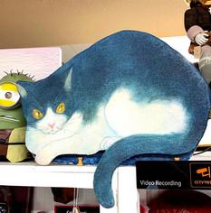 飼い猫 : ブルー