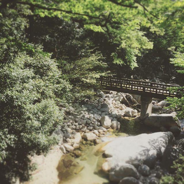 湯の山温泉三滝川