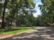 Raintree Gainesville Florida
