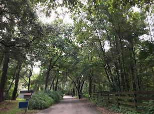 Malore Gardens Gainesville Florida