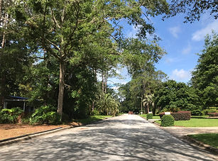 Forest Ridge Gainesville Florida