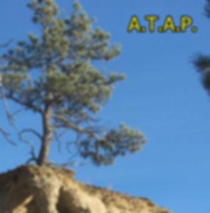 ATAP-crop 3-31-20.JPG