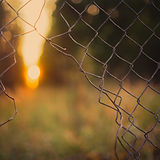 blurred-background-bokeh-colors-1133499.