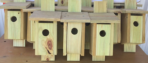 birdhouses (2).JPG