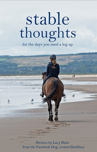 STABLE THOUGHTS