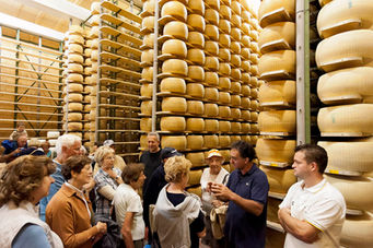 Parmiggiano factory - food experience