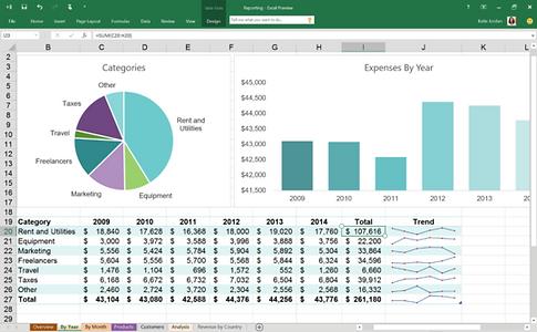 Microsoft Excel Programmierer