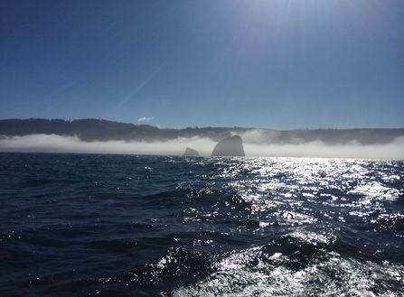fog lifting at False Cape