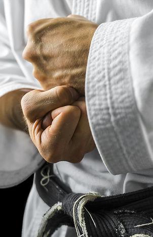 Closeup of male karate fighter hands..jp