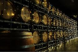 Sandalford cellar