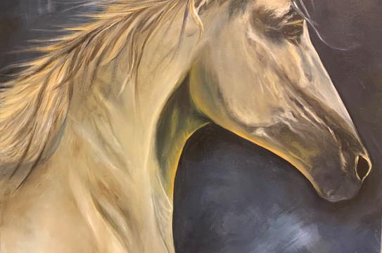 Horse, Oil on canvas, 90x60cm, Safaa Al