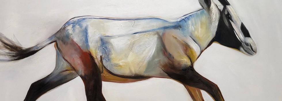 Alwadihi, Oil on canvas, 100x70cm, Israa