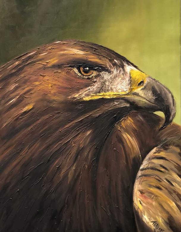Eagle, Mixed media on canvas, 70x50cm,Ab