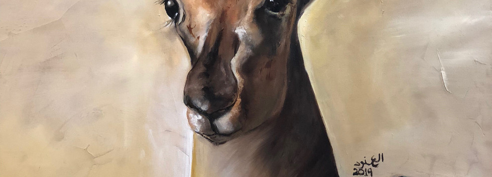 Alanoud, Oil on canvas, 100X70cm, Alanou