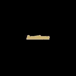 Logo- no circle.png