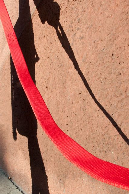 Dog Perspectives  red_leash.jpg