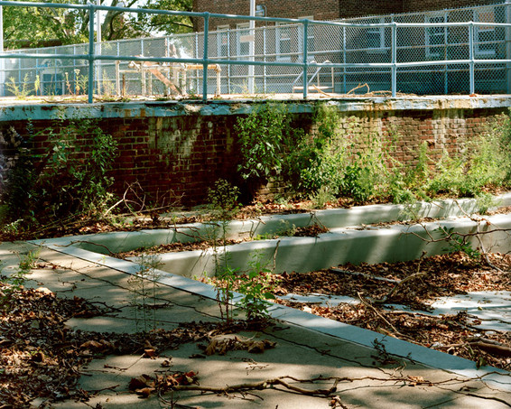A Paradise Lost Governors Island pool_ba