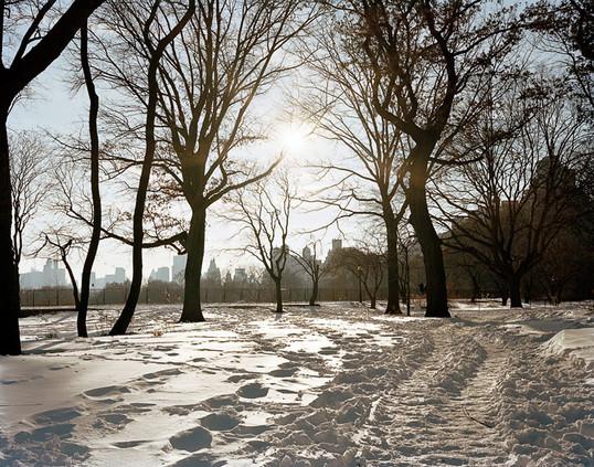 Central Park Snowy Path