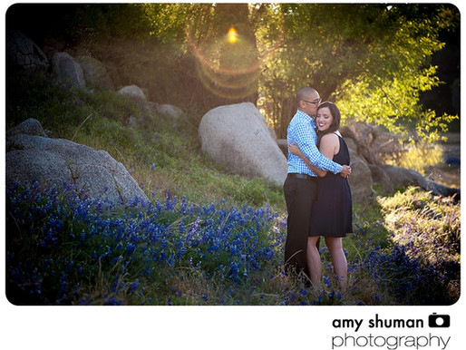 Engagement Photos by Sacramento, CA wedding photographer: Arri and Peter