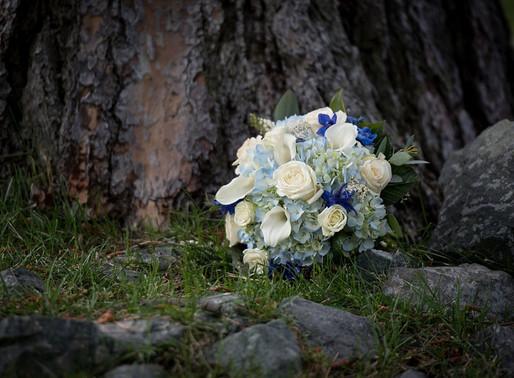Sean and Sonia: South Lake Tahoe wedding