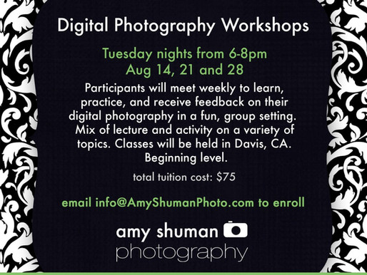 Photography Workshop Series #1, Davis, CA